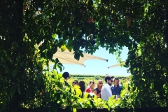 Wine spot west Australia